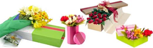 Diseño y Fabricacion de empaque para florerias y plantas vivas